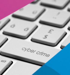 cyberrisco bergmanpostma